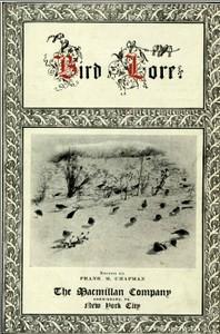 Bird-Lore, Volume I—1899