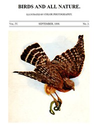 Cover of Birds and All Nature, Vol. 4, No. 3, September 1898 Illustrated by Color Photography