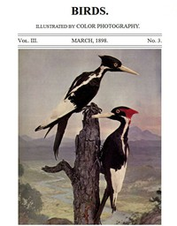 Birds and All Nature, Vol. 3, No. 3, March 1898 Illustrated by Color Photography