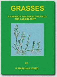 Cover of Grasses: A Handbook for use in the Field and Laboratory