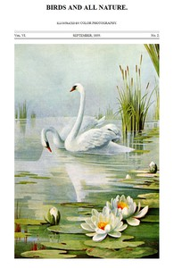 Birds and All Nature, Vol. 6, No. 2, September 1899 Illustrated by Color Photography