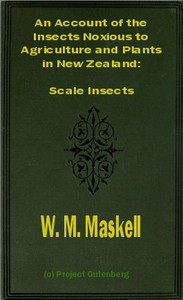Cover of An Account of the Insects Noxious to Agriculture and Plants in New ZealandThe Scale Insects (Coccididae)