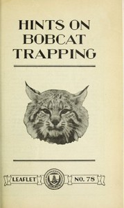 Hints on Bobcat Trapping