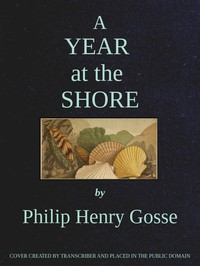 Cover of A Year at the Shore