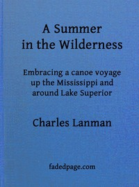 Cover of A Summer in the Wildernessembracing a canoe voyage up the Mississippi and around Lake Superior