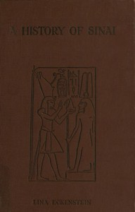 Cover of A History of Sinai