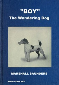 """""""Boy"""" the Wandering Dog: Adventures of a Fox-Terrier"""