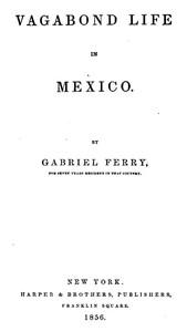 Vagabond Life in Mexico