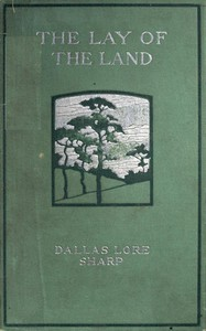 Cover of The Lay of the Land