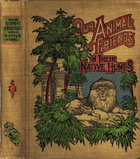Cover of A Natural History for Young People: Our Animal Friends in Their Native Homesincluding mammals, birds and fishes