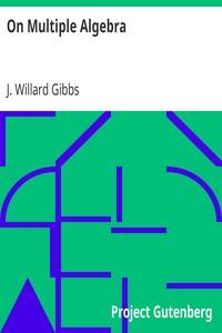 Cover of On Multiple Algebra