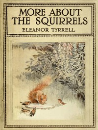 Cover of More About the Squirrels
