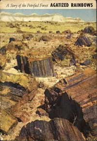 Agatized Rainbows: A Story of the Petrified Forest