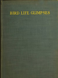 Cover of Bird Life Glimpses