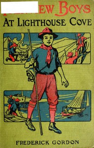 Cover of Fairview Boys at Lighthouse Cove; or, Carried out to Sea