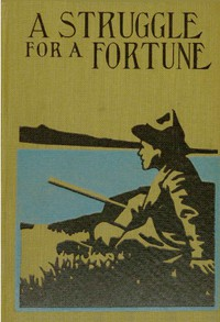 Cover of A Struggle for a Fortune