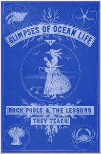 Cover of Glimpses of Ocean Life; Or, Rock-Pools and the Lessons they Teach