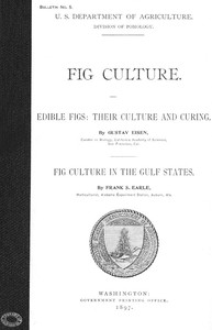 Fig Culture Edible Figs: Their Culture and Curing. Fig Culture in the Gulf States.