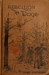 Cover of A Rebellion in Dixie