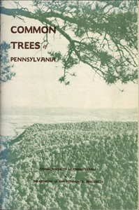 Common Trees of Pennsylvania