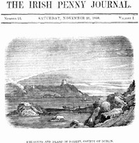 Cover of The Irish Penny Journal, Vol. 1 No. 21, November 21, 1840