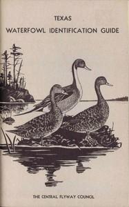 Waterfowl Identification Guide