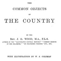 Cover of The Common Objects of the Country