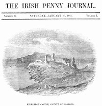 Cover of The Irish Penny Journal, Vol. 1 No. 29, January 16, 1841