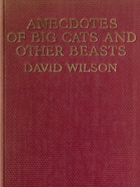 Cover of Anecdotes of Big Cats and Other Beasts
