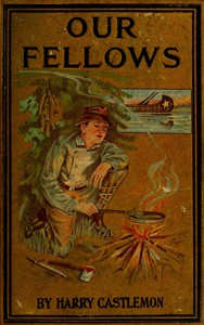 Our Fellows; Or, Skirmishes with the Swamp Dragoons
