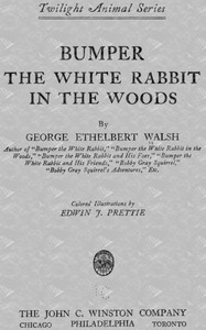 Cover of Bumper the White Rabbit in the Woods