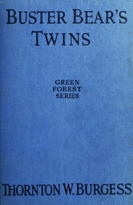 Cover of Buster Bear's Twins