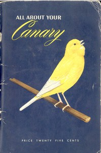 Cover of All About Your Canary