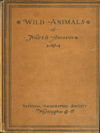 Wild Animals of North AmericaIntimate Studies of Big and Little Creatures of the Mammal Kingdom