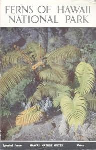 Ferns of Hawaii National Park