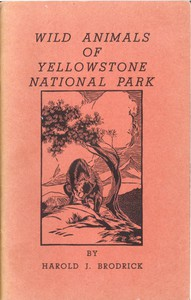 Cover of Wild Animals of Yellowstone National Park