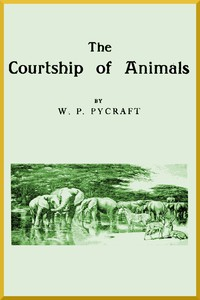 Cover of The Courtship of Animals