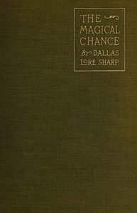 Cover of The Magical Chance