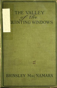 Cover of The Valley of Squinting Windows