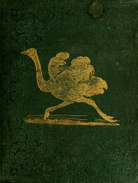 Cover of Tales About Birds, Illustrative of Their Nature, Habits, and Instincts
