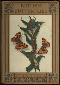 Cover of British Butterflies