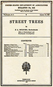 Cover of Street Trees