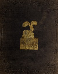 Cover of Peter Parley's Wonders of the Earth, Sea, and Sky