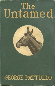 Cover of The Untamed: Range Life in the Southwest