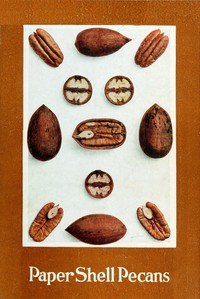 Paper Shell Pecans