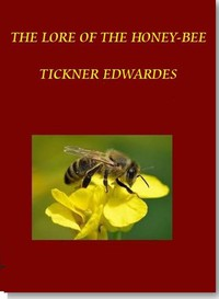 Cover of The Lore of the Honey-Bee
