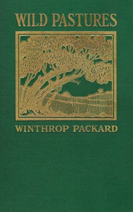 Cover of Wild Pastures