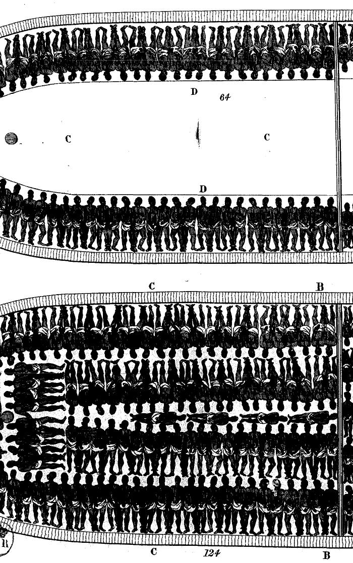Parisaraya surakimu essay help fishing ohiopyle The Root