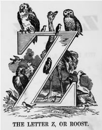 THE LETTER Z, OR ROOST