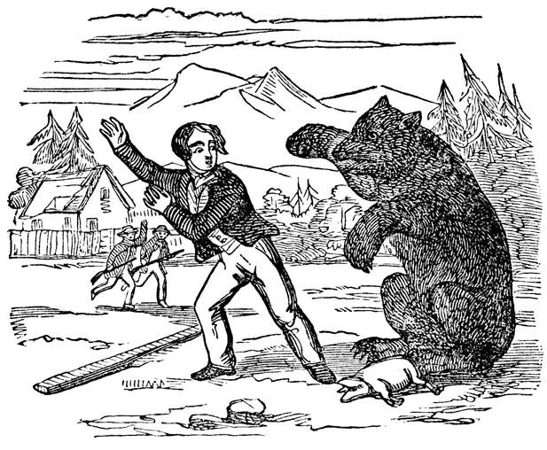 The Bear Prepared To Give Battle
